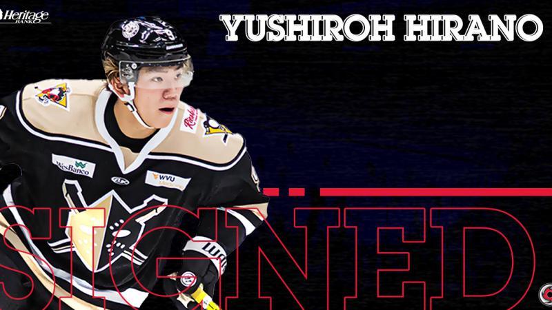Cyclones Ink Japanese Talent, Yushiroh Hirano